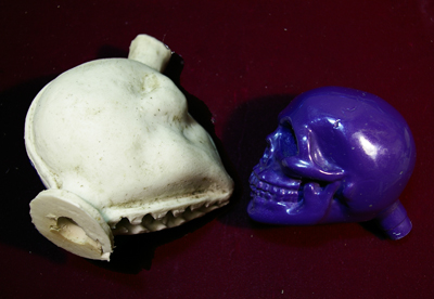 extracted PROGRESS SEQUENCE. Small Skull